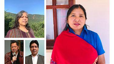Indigene Interessensvertreter